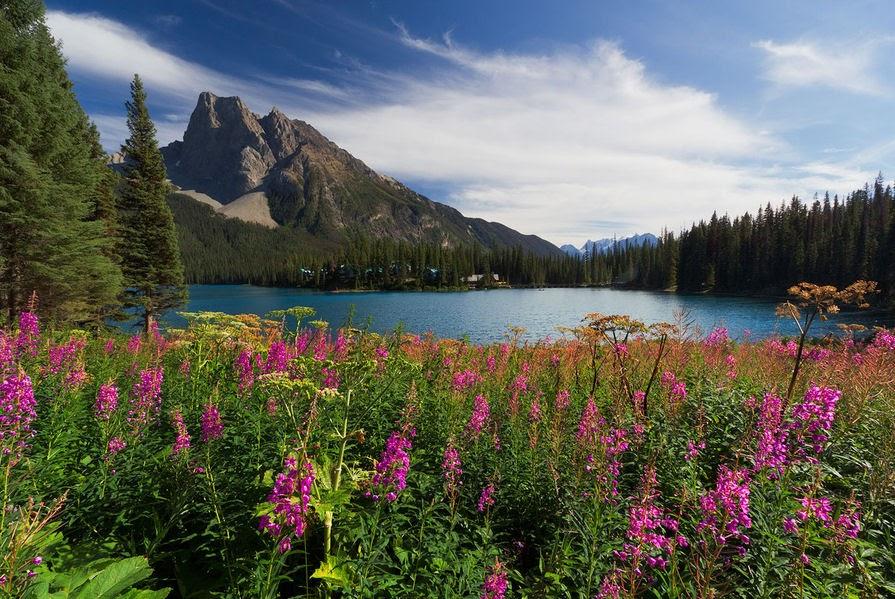 Resultado de imagen de Lago Emerald, Canadá