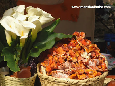 Flores y Hongos silvestres en los mercados