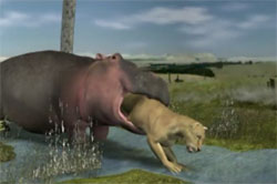 Hubert the Hippo's Travel Tips: Never eat more than you ...