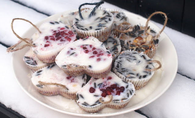 Lav let og nemt smuk fuglemad i muffinforme