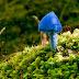 The Sky Blue Mushroom