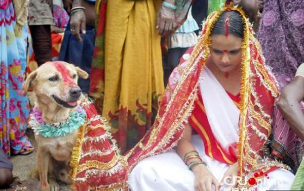 Gadis kahwin anjing untuk buang sial