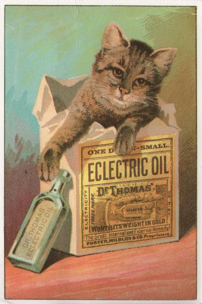 reproduction vintage ad showing cat in a box labelled Dr Thomas Eclectric Oil