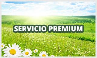 http://www.funerariamartinezperu.com/2014/12/servicio-funerario-premium.html