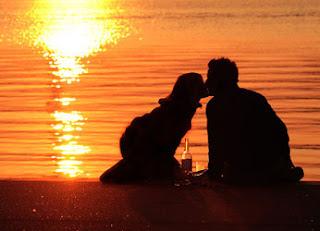 Romantischer Heiratsantrag, Paar am Rhein