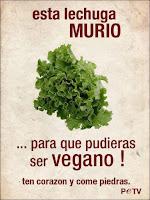 ¿Por qué el debate Carnívoros Vs Veganos está mal planteado?