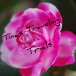 Tina&#39;s Traveling Trials