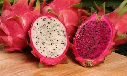 manfaat dan kandungan nutrisi buah naga