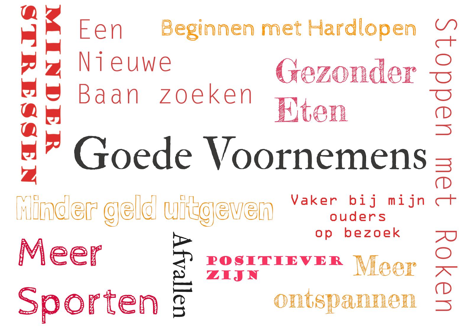 Dutch Design On A Budget Goede Voornemens