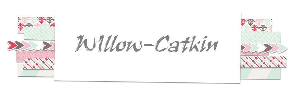 Willow- Catkin