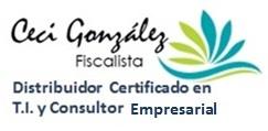 Cecy González Fiscalista y Consultor en T.I.