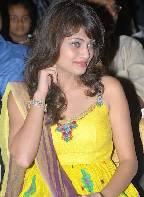 Actress Sneha Ullal Hot Photos