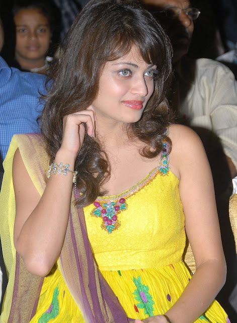 Actress Sneha Ullal Hot Photos hot photos