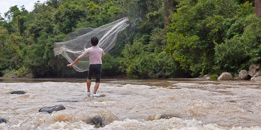 catching fish from the Bahau River, East Kalimantan, Indonesia