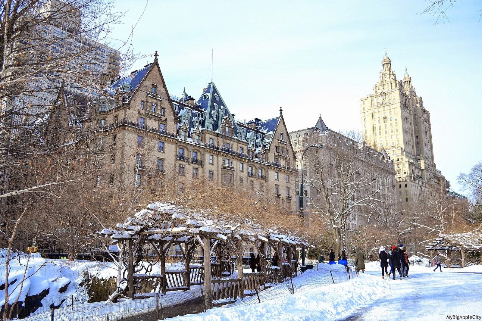 juno-2015-NYC-Blizzard-Travel-lifestyle-blogger