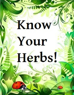 know your herbs - stinging nettle