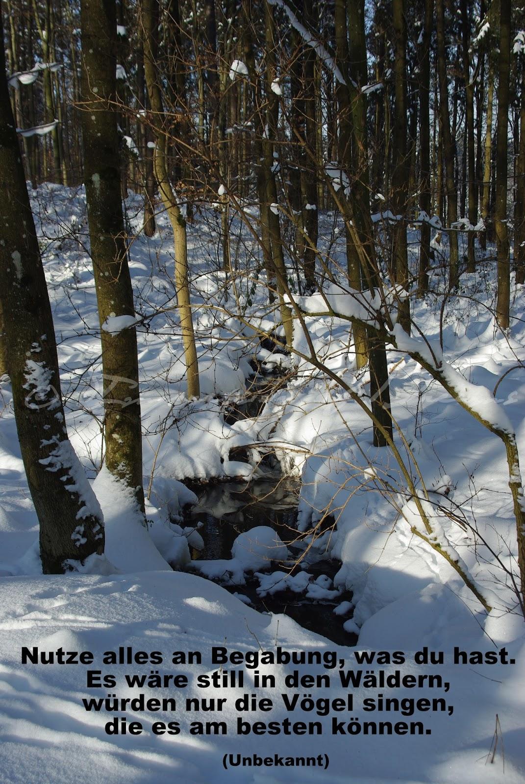 Nutze alles an Begabung, was du hast. Es wäre still in den Wäldern, würden nur die Vögel singen, die es am besten können