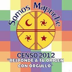 Mapuche soy...
