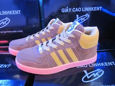Giày nam cao GT233. 75