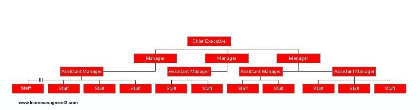 john lewis management structure