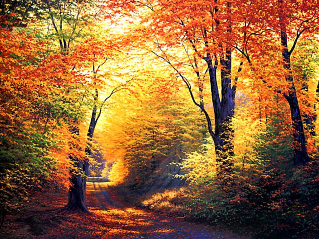 Free Fall Autumn Desktop