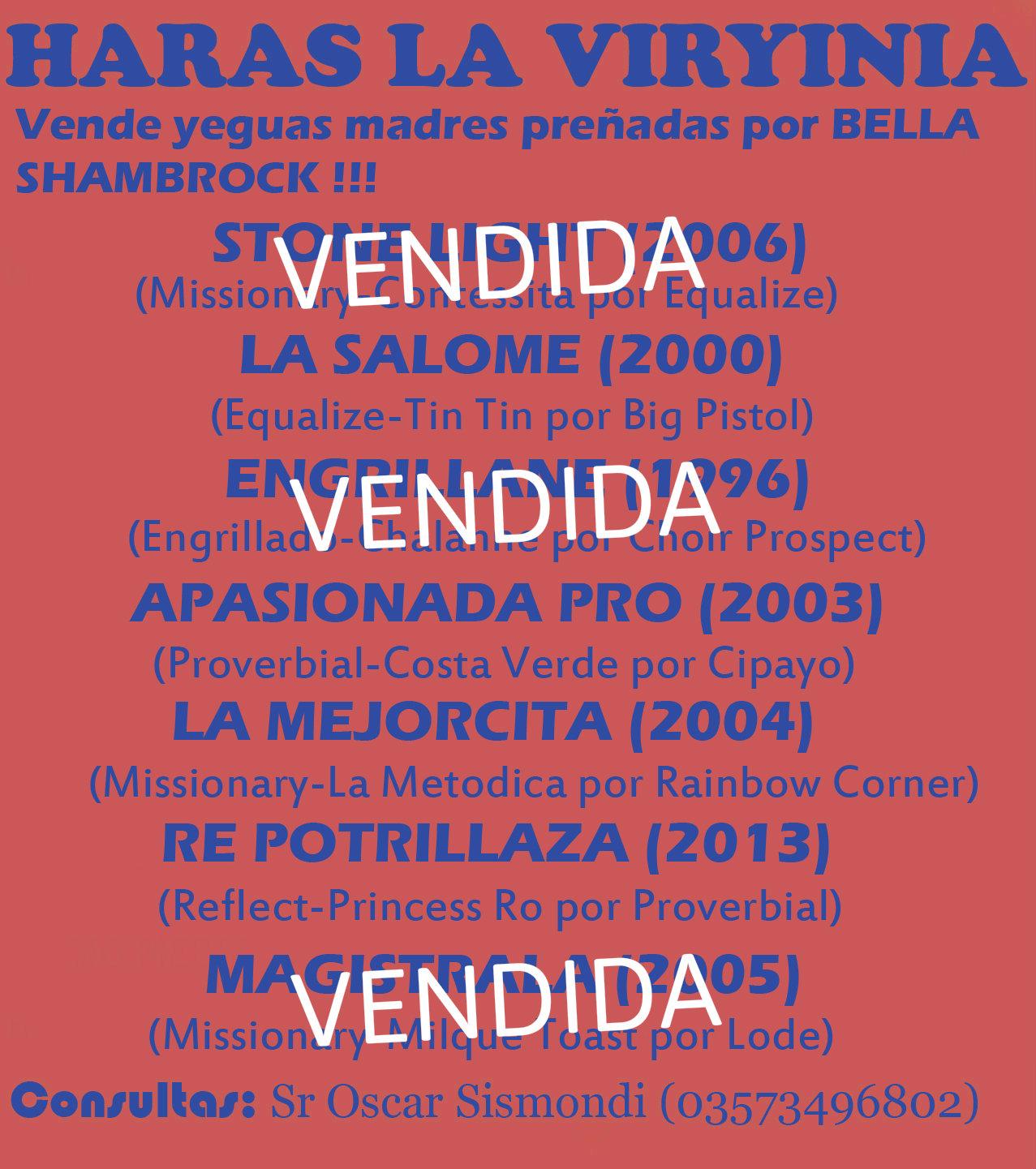HS LA VIRYINIA YEGUAS MADRES 1