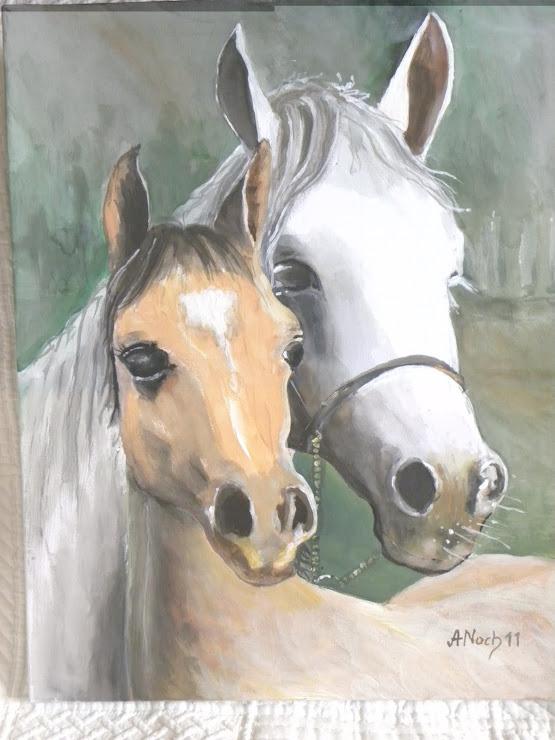 020 Konie