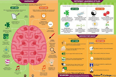 LEFT AND RIGHT BRAIN OVERVIEW