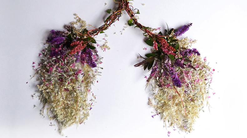 Órganos Humanos Hecho de Flores y Plantas de Camila Carlow