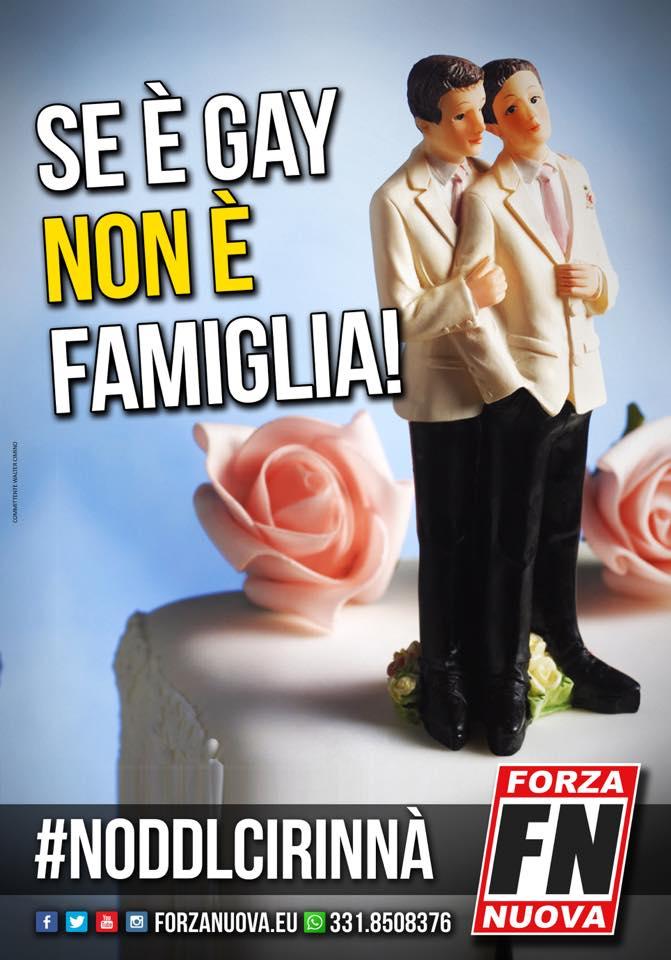NO al DDL Cirinnà!