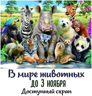 В мире животных 03/11