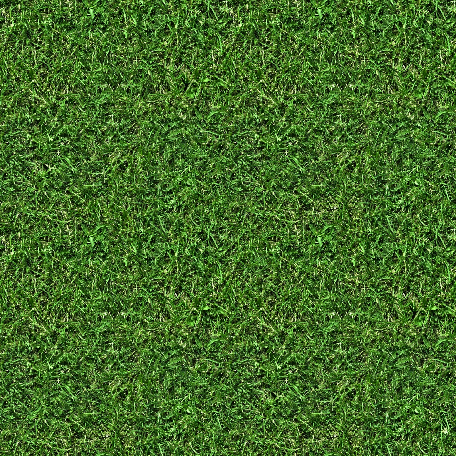 GRASS 5 Seamless Turf Lawn Green Ground Field Texture 2048x2048
