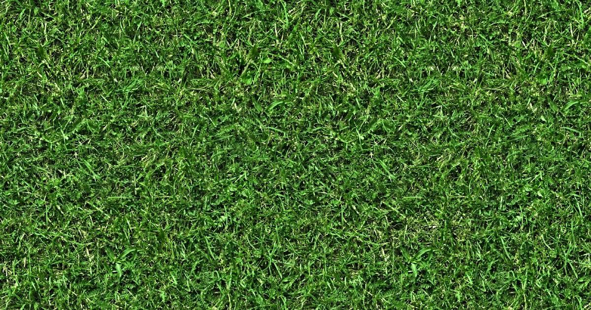 Football field turf texture