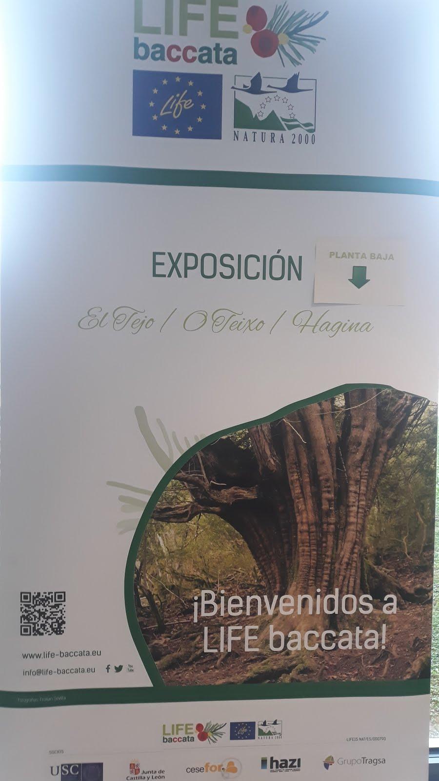 """EXPOSICIÓN  """"Bienvenidos a LIFE BACCATA"""""""