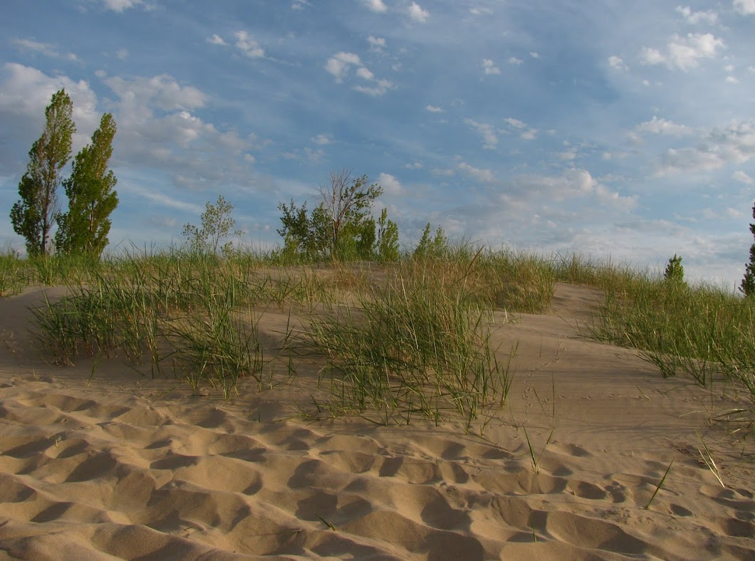 Sand dunes near Lake Michigan-Tiscornia Park St. Joseph Michigan