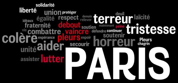 Tristesse et colère : Paris touchée au coeur, la France en pleurs