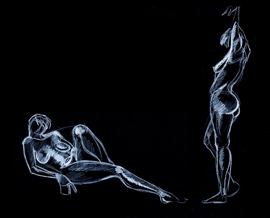 manu lafay dessins nus blanc sur noir