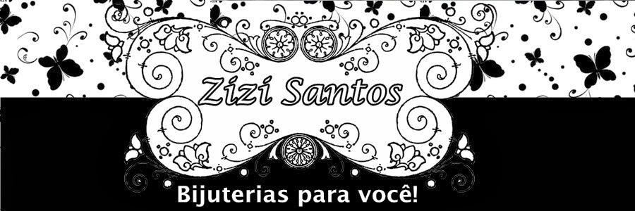 Blog da Zizi Santos