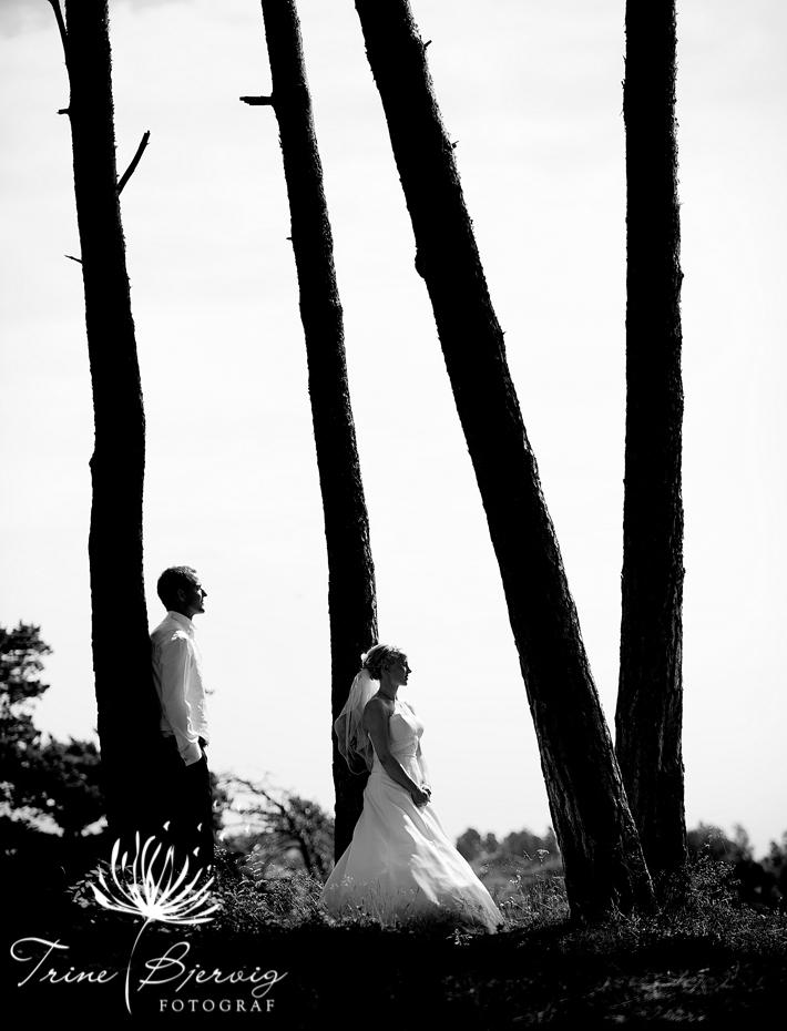 Bryllupsfotograf i Tønsberg, Vestfold, Fotograf Trine Bjervig. Bilder fra Ringshaugstranda