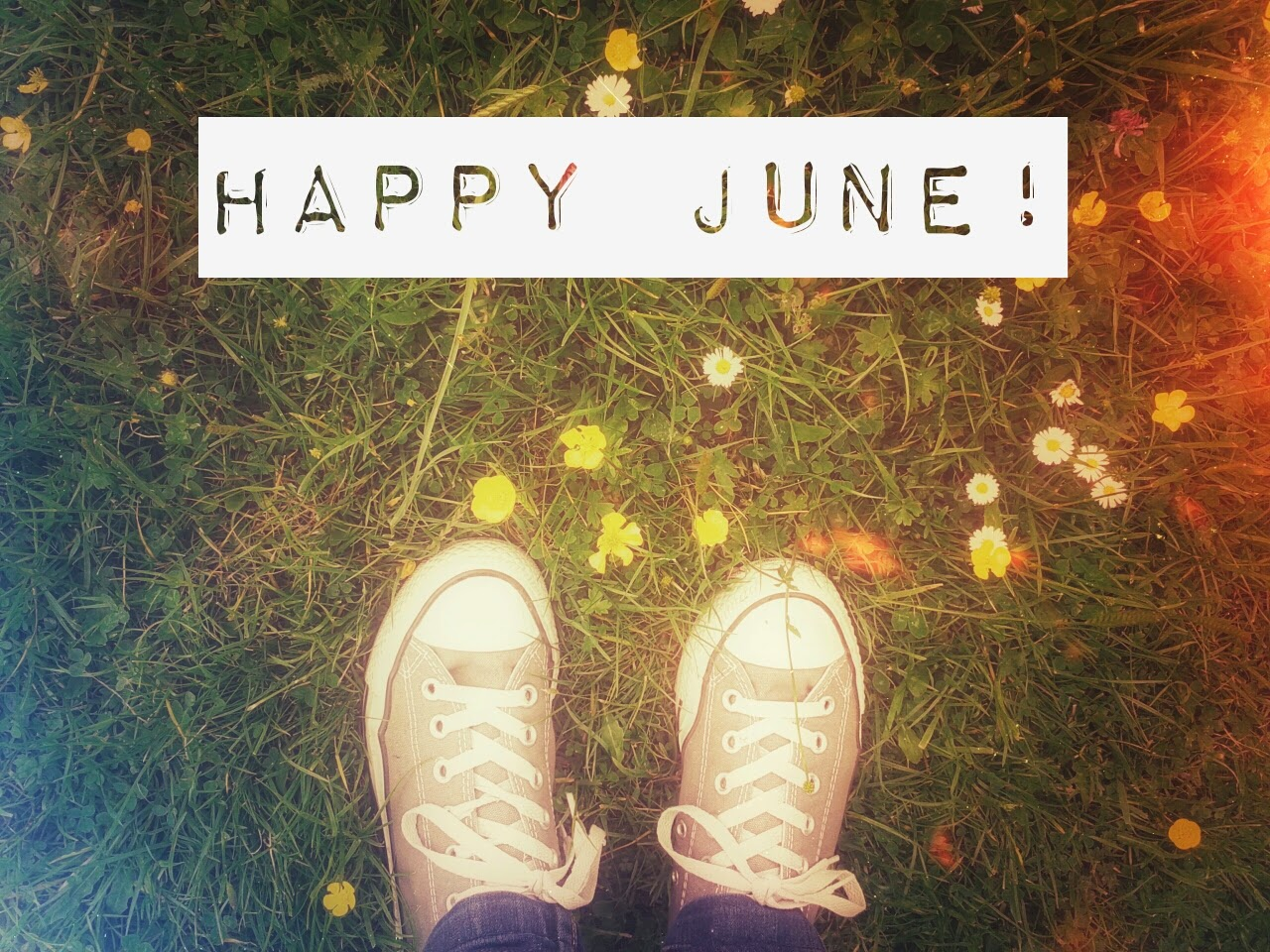 Happy June! // 76sunflowers