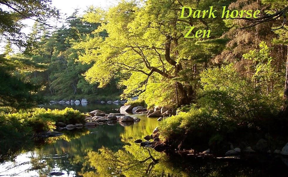 Dark horse Zen