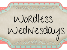 Wordless Wednesday- Getting Back on Track