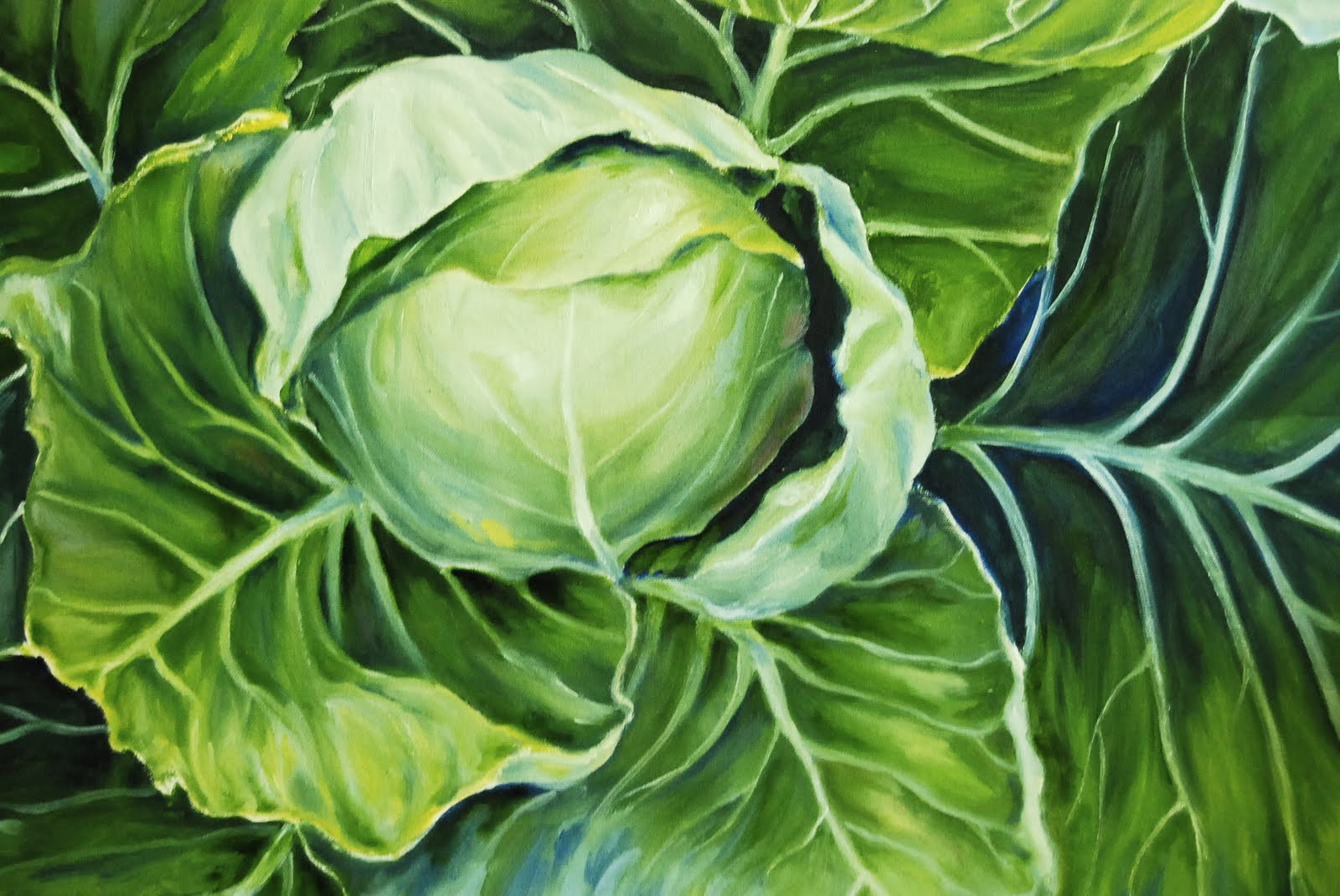 Image result for cabbages painting