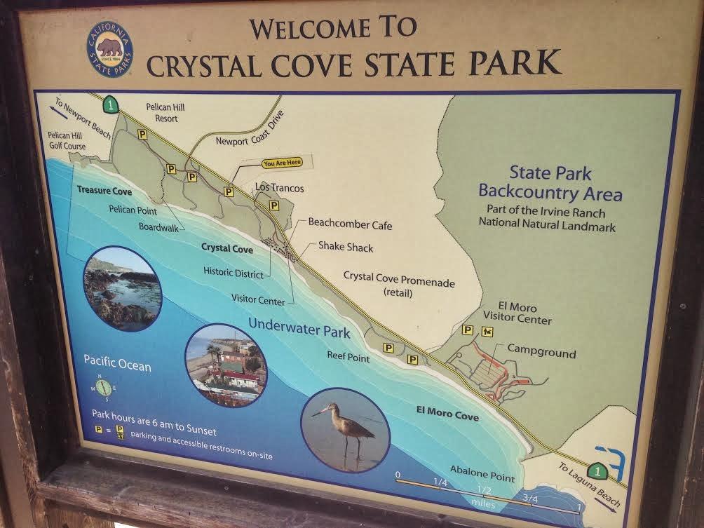 Go Hike It Crystal Cove State Park Hiking Trail
