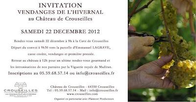 vignoble de madiran  vendanges de l'hivernal au Château de Crouseilles
