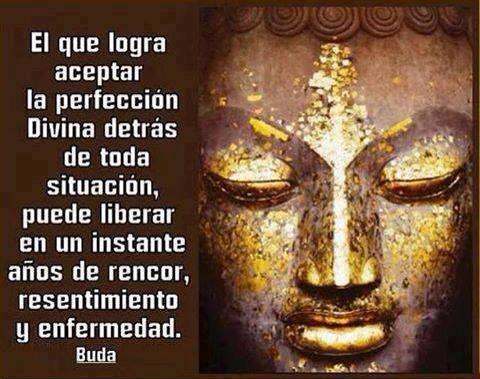 autoayuda y superacion, felicidad, amor, dinero, paz interior, meditacion