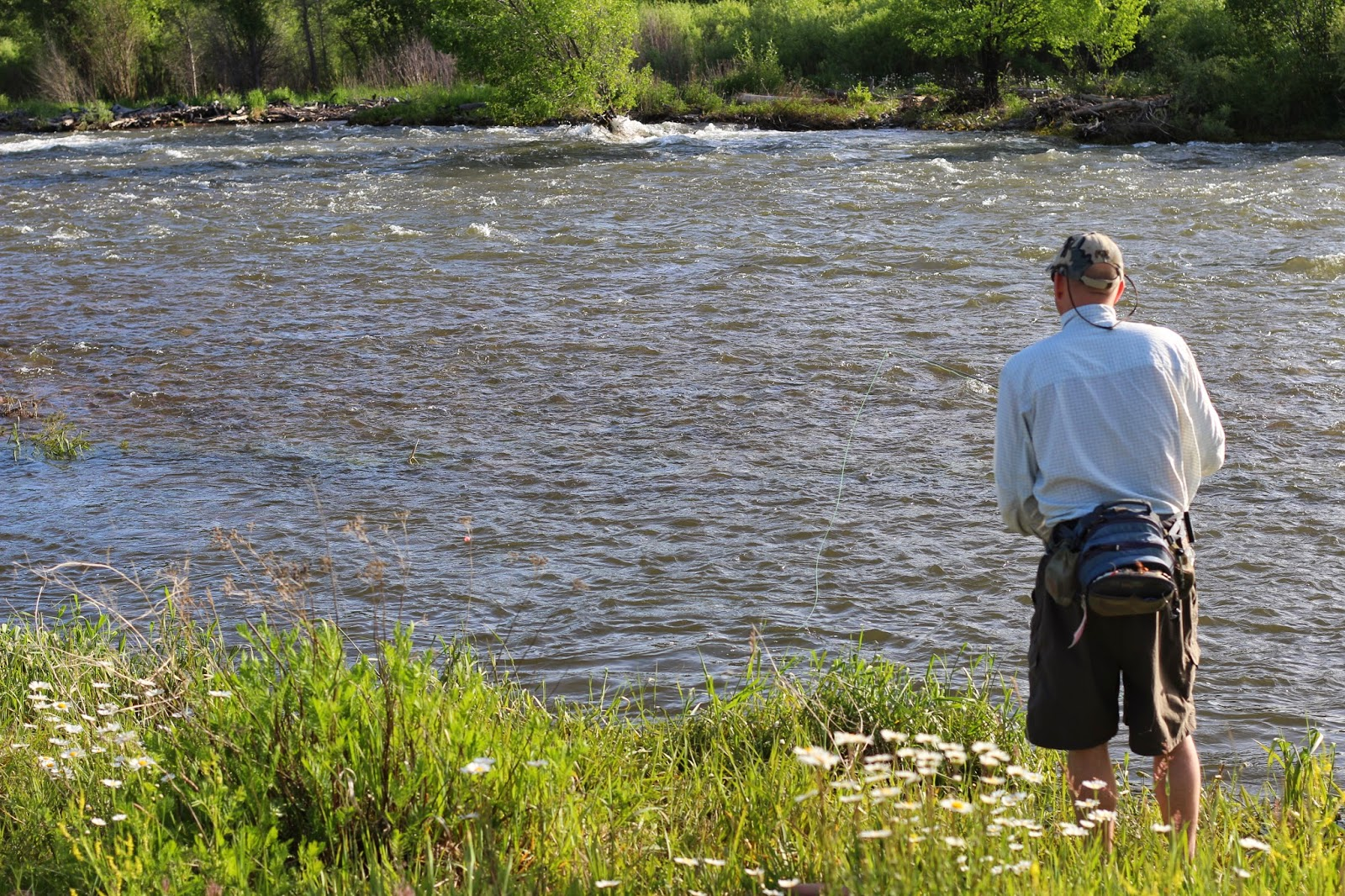 Jay scott outdoors 6 23 14 colorado fishing report for Colorado fishing report