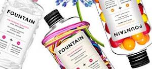 Fountain, una cucharadita de Belleza y Salud