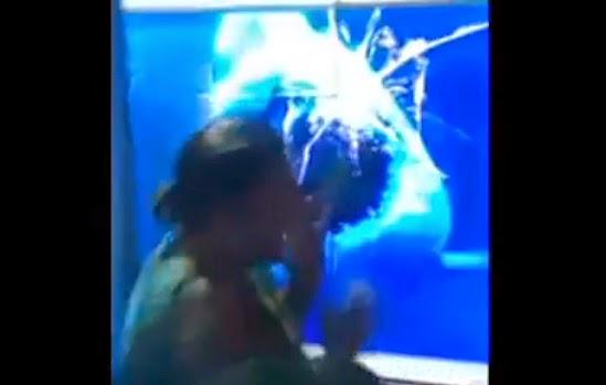tiburón ataca a una mujer en un acuario virtual