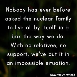 Nobody has ever before asked the nuclear family